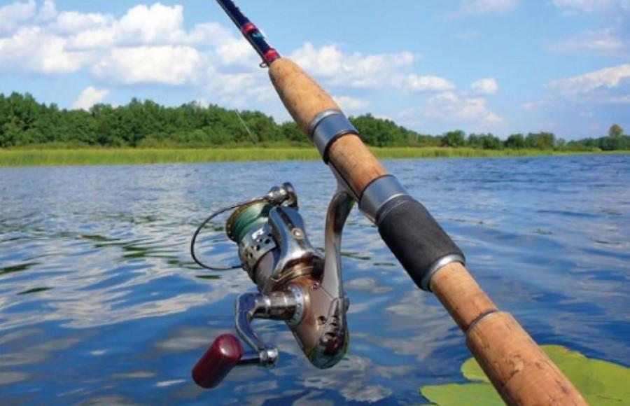 рыбалка в волгоградской области на дону ограничения в 2017 году